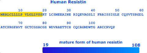 HUMAN RESISTIN